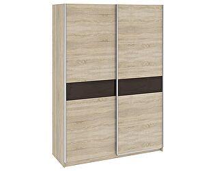 Шкаф-купе для одежды ТриЯ Ларго СМ-181.09.001 с 2-мя глухими дверями