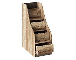 Лестница приставная ТриЯ Пилигрим ТД-276.11.12 с ящиками