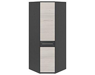 Шкаф угловой ТриЯ Сити СМ-194.07.006 с 1-й дверью