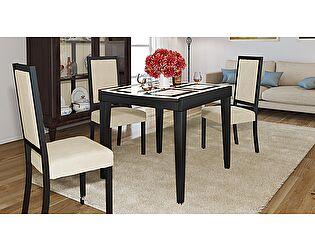 Стол обеденный ТриЯ Танго Т1 раздвижной со стеклом, арт. С-361