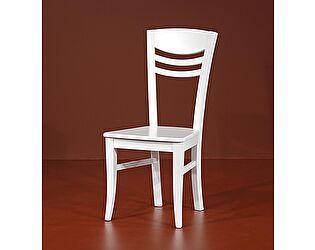 Купить стул Юта Денди 5-14