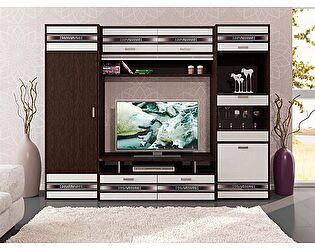 Набор мебели для гостиной Витра Валенсия, композиция 3