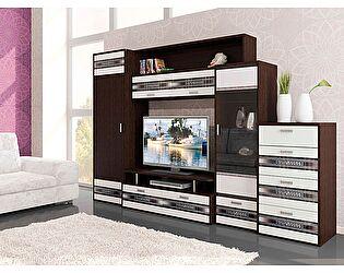 Набор мебели для гостиной Витра Валенсия, композиция 4