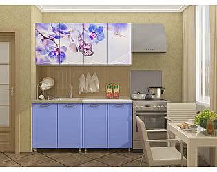 Кухня Пенза мебель МДФ с фотопечатью Бабочки 1,6 м