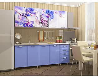 Кухня Пенза мебель МДФ с фотопечатью Бабочки 2м