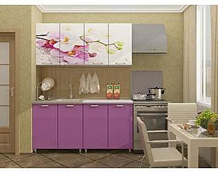 Кухня Пенза мебель МДФ с фотопечатью Орхидея 1,6 м