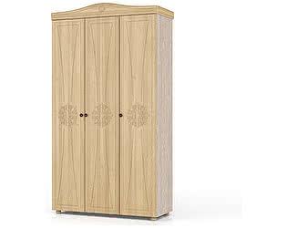 Шкаф Мебельный двор Онега ШК-33