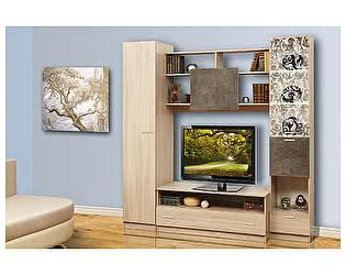 Набор мебели Олимп-Мебель Магна-2