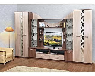 Купить гостиную Олимп-Мебель Набор мебели Софи
