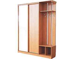 Купить шкаф Боровичи-мебель 2-х дверная прихожая-купе