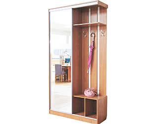 Купить шкаф Боровичи-мебель 1-дверная прихожая-купе