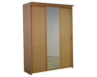 Шкаф-купе 3х дверный с 1 зеркальной дверью