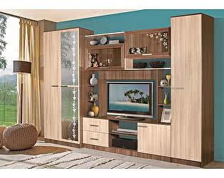 Купить гостиную Мебель Маркет Мадрид 1 (Ясень Шимо Тёмный/Ясень Шимо Светлый)