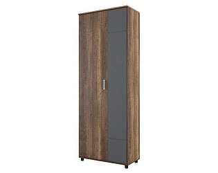 Купить шкаф SV-мебель двухстворчатый SV-мебель Визит-1 (МДФ) (комбинированный)