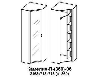 Купить шкаф Santan Камелия П-(360)-06-З (зеркало)