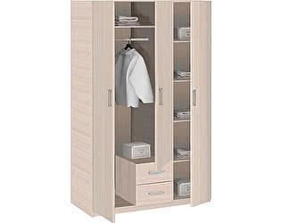 Шкаф 3-дверный Боровичи Эко с зеркалом, арт. 5.14 Z Эко