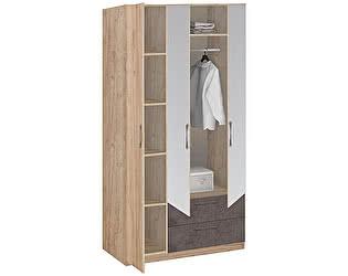 Шкаф Боровичи Лофт 3-х дверный с зеркалом 19.31Z