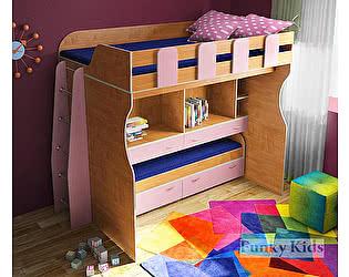 Купить кровать Фанки Кидз 19 двухъярусная