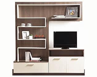 Купить гостиную Боровичи-мебель Стенка СОЛО 7
