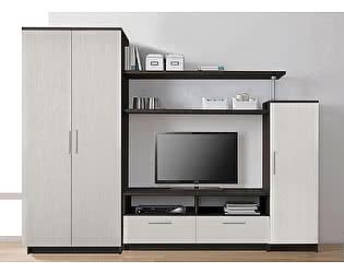 Купить гостиную Боровичи-мебель СОЛО 1