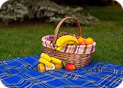 Пледы для пикника