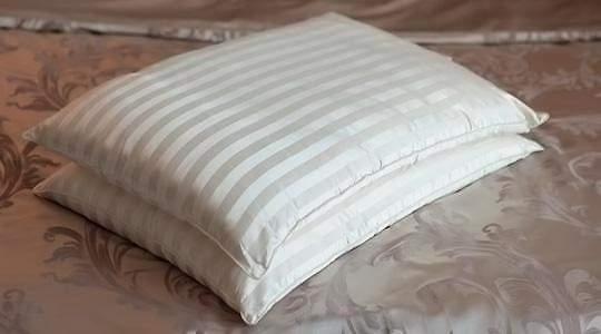 Шелковая подушка в чехле из шелка Шелковый соблазн Люкс
