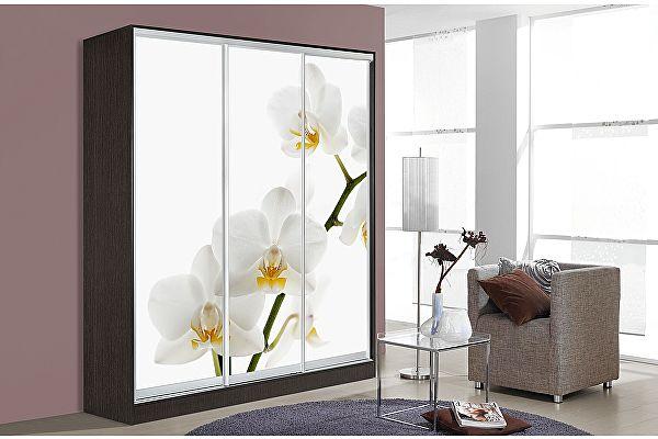 Шкаф-купе Мебель Маркет Оскар 3 Орхидея (Венге)