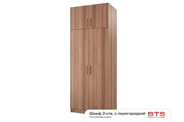Шкаф BTS 2-х створчатый с перегородкой