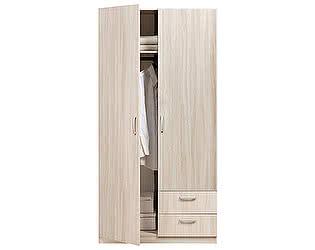 Купить шкаф Боровичи-мебель 2-дверный Эко, арт. 5.13 Эко