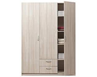 Купить шкаф Боровичи-мебель 3-дверный Эко, арт. 5.14 Эко
