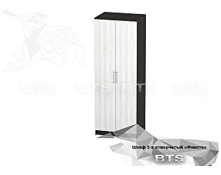 Купить шкаф BTS Фиеста 2-х створчатый
