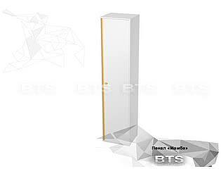 Купить шкаф BTS Мамба ПН-06