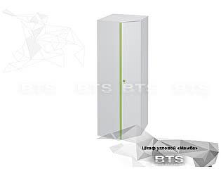 Купить шкаф BTS Мамба ШК-01 угловой