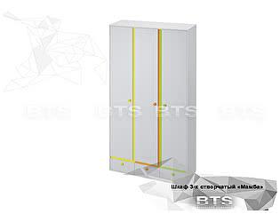 Купить шкаф BTS Мамба ШК-16 3-х створчатый