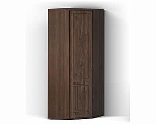 Купить шкаф КМК для одежды Шарм угловой КМК 0722.17, орех донской/орех экко