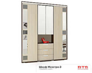 Купить шкаф BTS Маэстро-3