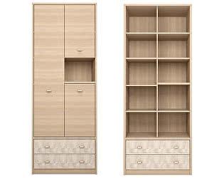 Купить шкаф Ижмебель Ультра 2 комбинированный