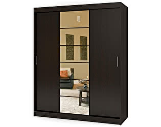 Купить шкаф Баронс Групп Риф-3 (зеркало) вариант 2 ШК.024.1300-01/21