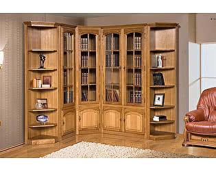 Купить гостиную Бобруйскмебель Библиотека Элбург