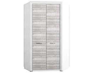 Купить шкаф Анрекс платяной Olivia 2D