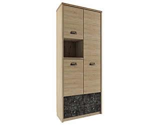 Купить шкаф Анрекс комбинированный Diesel 3D2SN/D3 (истамбул)