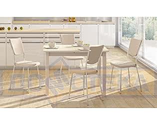 Купить обеденную группу Домотека стол Румба ПР + стулья Омега 5 А-1/А-1 (4шт.)