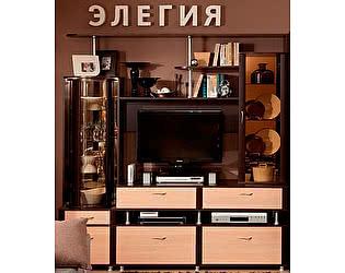 Купить гостиную Глазов МЦН 23 Элегия