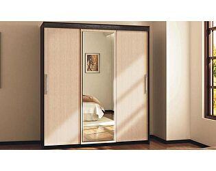 Купить шкаф Диал Вариант 1 арт. 012