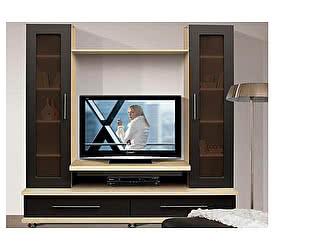 Купить гостиную Аджио ТВ 1