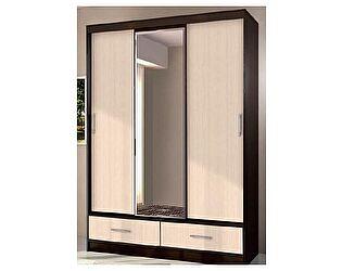 Купить шкаф Диал арт. 009