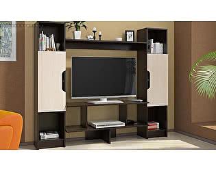 Купить гостиную Стиль TV-6