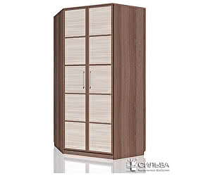 Купить шкаф Сильва Рива 2 НМ 013.04-04