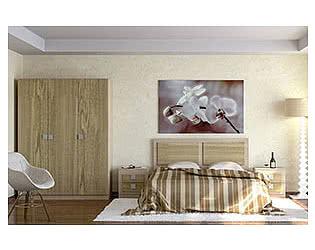 Спальня Компасс Александрия
