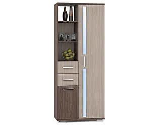 Купить шкаф Mobi Дарси 1